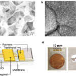 Flexible nanoporous tunable electrical double layer biosensors for sweat diagnostics